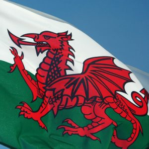 Care Regulation in Wales – Friend or Foe?